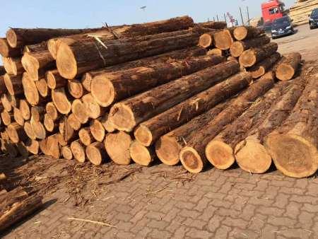 海门木业批发