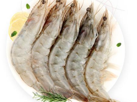 江西冷冻虾价格