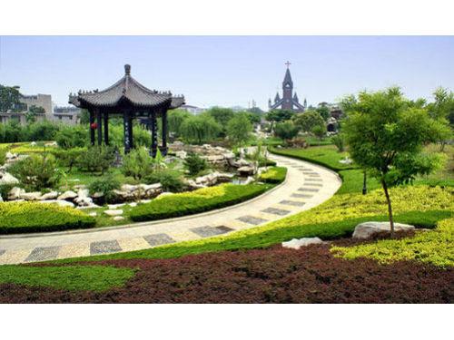 上海园林绿化设计之观叶植物冬天如何防寒防冻